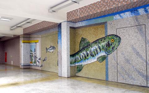 圖片2: 鱗鱗波光-悠游的魚