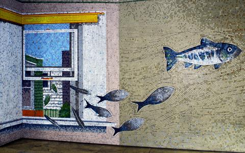 圖片3: 鱗鱗波光-悠游的魚