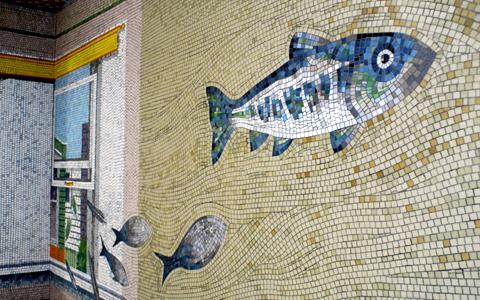 圖片4: 鱗鱗波光-悠游的魚