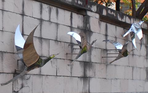 圖片3: 飛鳥(共7件)