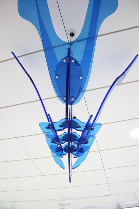 圖片4: 風箏--悠游天際