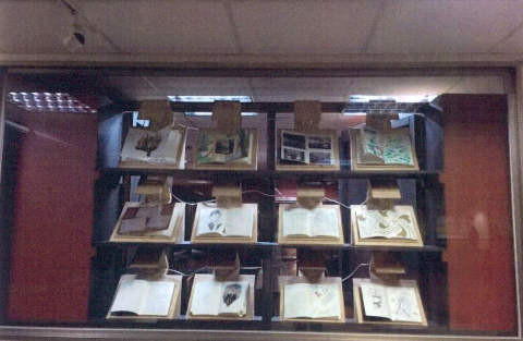 圖片1: 臺大藏珍閣     The Chamber of Uncanny Objects (作品照片共7張)