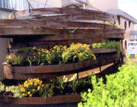 圖片5: 植變:身態園丁的大療癒術   ThePlant Transformation Project: The Healing Effect of Gardening