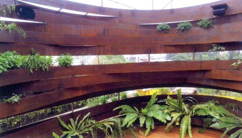 圖片8: 植變:身態園丁的大療癒術   ThePlant Transformation Project: The Healing Effect of Gardening