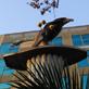 縮圖1: 風雲際會-鳥人 (作品縮圖共3張)