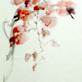 縮圖1: 老藤秋葉(紫藤) (作品縮圖共1張)
