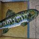 縮圖1: 鱗鱗波光-悠游的魚 (作品縮圖共6張)