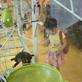 縮圖5: 滾球樂園