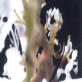 縮圖7: 《觀聽的邊境--微觀世界》(植/物/像)     At the Edge of Perception A Microscopic World (Flora Anima)