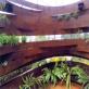 縮圖8: 植變:身態園丁的大療癒術   ThePlant Transformation Project: The Healing Effect of Gardening